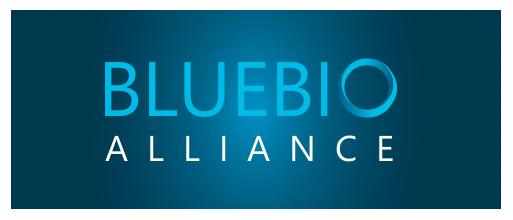 bba_logo-fundo-azul